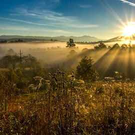 Morning rays by Flavian Savescu - Landscapes Prairies, Meadows & Fields (  )