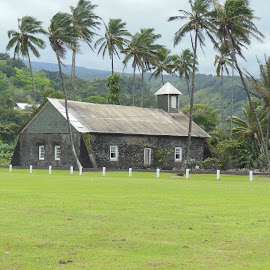 Old Hawaiian Church by Lynda  Roegner - Landscapes Prairies, Meadows & Fields ( palm, church, grass, palm trees, scenery, hawaii, tropics )
