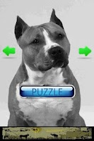 Screenshot of Dog Puzzle: American Staffords