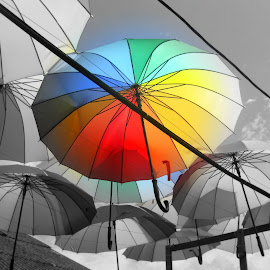 Rainbow Umbrellas by Jaclyn Wong - Novices Only Objects & Still Life ( colourful, umbrellas, chew jetty, penang, malaysia, rainbow,  )