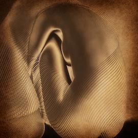 GOLD by Carmen Velcic - Digital Art People ( abstract, body, nude, girl, woman, she, lady, digital )