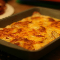 Fennel-Potato Au Gratin