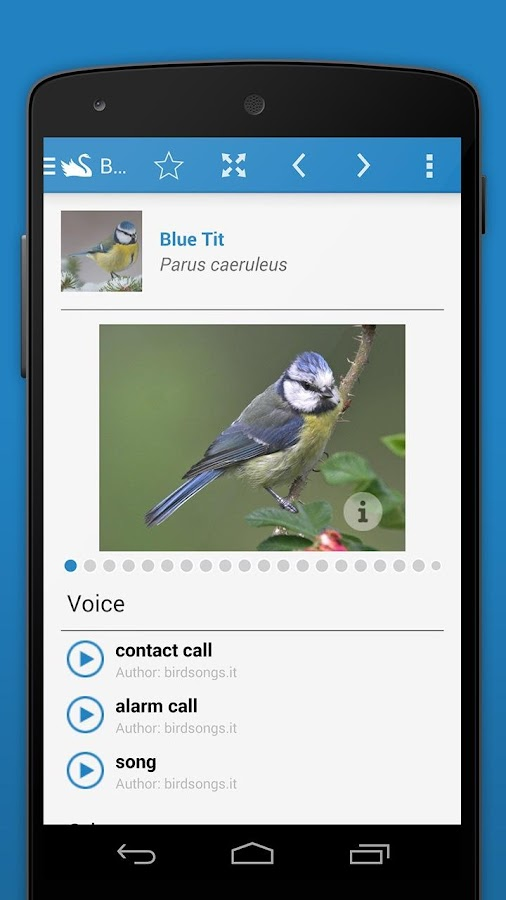 iKnow Birds 2 PRO - Europe Screenshot 4