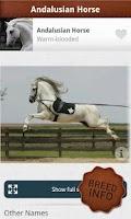 Screenshot of Horses PRO