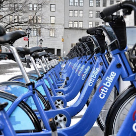 Citibike by Hesham Ali - Sports & Fitness Other Sports ( u.s.a, bike, blue, http://www.pixoto.com/images-photography/sports-and-fitness/other-sports/citibike-5696935545536512#, manhattan, new york )