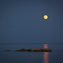 Moon Rising by Sue Matsunaga - Novices Only Landscapes (  )