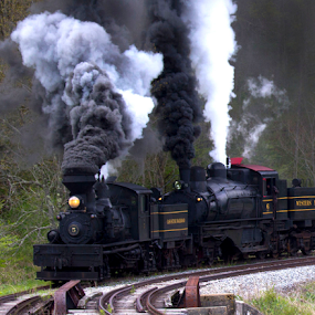 by Donna Neal - Transportation Trains (  )
