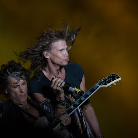 Aerosmith by Radu Gospodinov - People Musicians & Entertainers ( music, perry, concert, tyler, joe, steven, aerosmith )