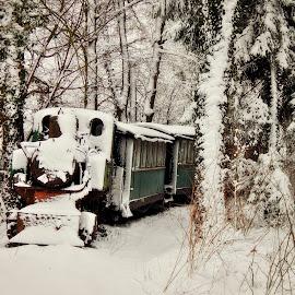 by Nenad Milic - Transportation Trains