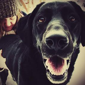 His Eyes by Nat Bolfan-Stosic - Uncategorized All Uncategorized ( love, girl, soul, dog, eyes,  )