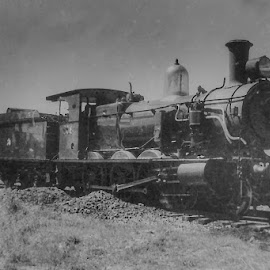 Clasic steam by Ned Kelly - Transportation Trains ( engine, steam train, train, archive, transportation )