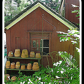 by Constance S. Jackson - Typography Captioned Photos ( shed, nature, plants, pots, garden )