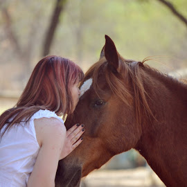 by Silke Jordaan - Novices Only Portraits & People ( love, kiss, natural light, pony, girl, horse, brown )