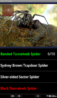 Screenshot of Name That Spider