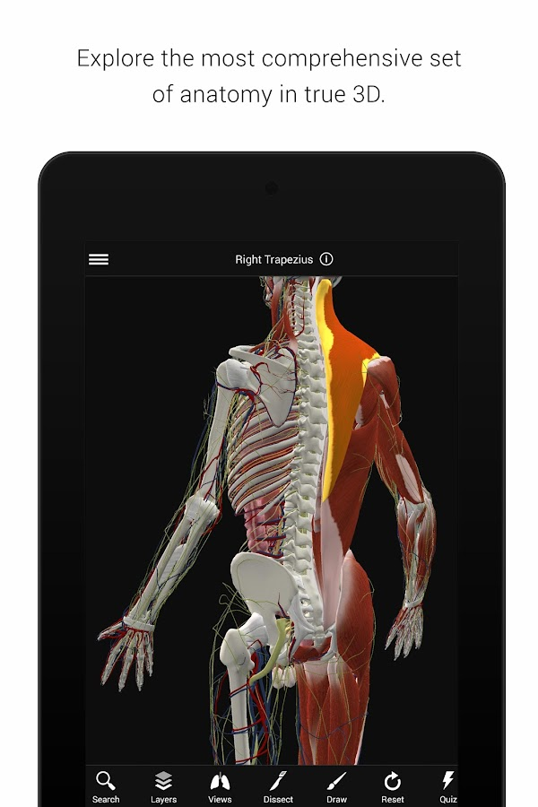 BioDigital Human - 3D Anatomy Screenshot 1