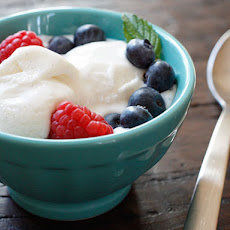 Low Fat Vanilla Bean Frozen Yogurt