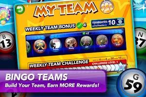 Screenshot of Bingo Rush 2