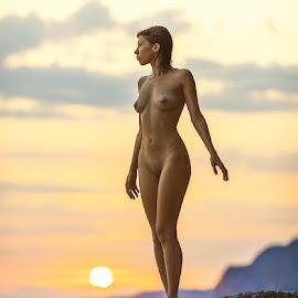 Sunset. by Dmitry Laudin - Nudes & Boudoir Artistic Nude ( sunset, sun )