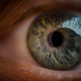 eye by Goran Matejin - People Body Parts ( macro, blue, green, close-up, eye )