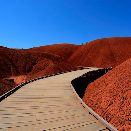 Mars Attaxks by Jessica Lavoie - Landscapes Deserts ( oregon, one of the 7 wonders of oregon, painted cove trail, roadtrip, painted hills )