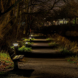 Catwalk by Bojan Bilas - City,  Street & Park  City Parks ( catwalk, park, finland, night, turku, city )