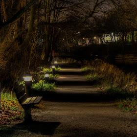 noćna šetnja (1 of 1).jpg
