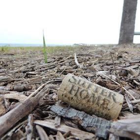 Wine Cork by William Rhodes - Artistic Objects Other Objects ( cork, gandy, bridge )