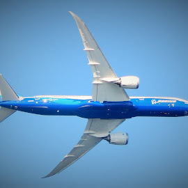 boeing  by Lavonne Ripley - Transportation Airplanes
