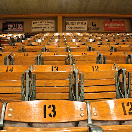 Off Season, Empty Seats by Kathy Suttles - Sports & Fitness Basketball