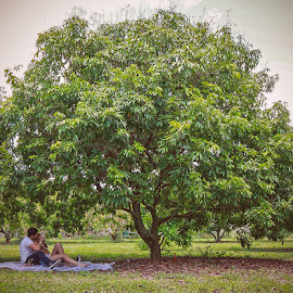 Picnic  by Arantxa Valladares - People Couples ( love, tree, feeding, couple, cute, picnic )