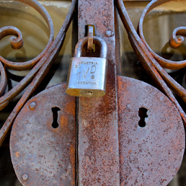 Locked Out by Venetia Featherstone-Witty - Artistic Objects Other Objects ( fancy ironwork, rusty metal, recoleta cemetery, padlock on door, padlock )