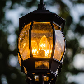 Lantern by Angelo Perrino - City,  Street & Park  Neighborhoods