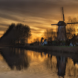 Damme and the mill by Colin Dixon - Landscapes Waterscapes ( water, canals, warm, winter, sunset, trees, windmills )