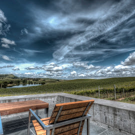 Post Storm Carneros by Tina Benjamin - Landscapes Mountains & Hills ( vineyard, napa valley, carneros, cuvaison, napa, winery )
