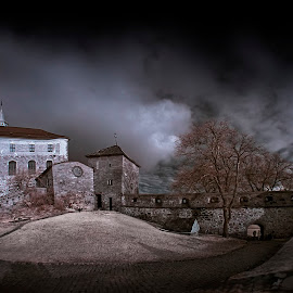 Ghost castle by Jan Kiese - Buildings & Architecture Public & Historical ( infrared, oslo, castle )