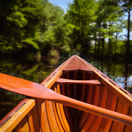 Canoeing in Trap Pond by Betsy Wilson - Transportation Boats ( trap pond, wcha, canoe )