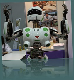 robo_japan_2008_16