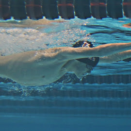 torpedo by Dale Wooten - Sports & Fitness Swimming ( water, athletics, high school, underwater, boys, breast stroke, athlete, swimming )