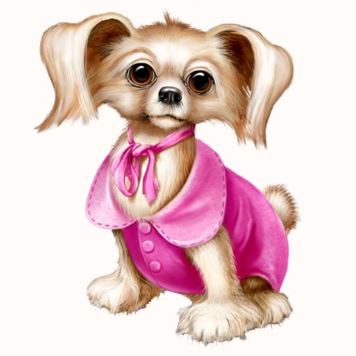 The Best Dog Accessories LOGO-APP點子