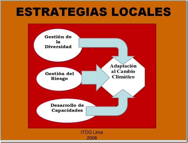 Estrategias Locales