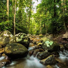 Water Flow between Rocks  by Stephen Ckk - Nature Up Close Rock & Stone