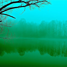 The mysterious lake. by Peter DiMarco - Landscapes Weather ( water, mysterious reflection, trees, lake, dark murky waters )