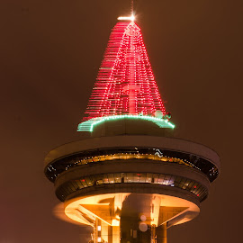 The Harbour Tower in Vancouver by Cory Bohnenkamp - Buildings & Architecture Other Exteriors ( building, tree, christmas, night, vancouver )