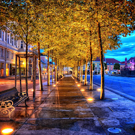 Klagenfurt by Cristian Peša - City,  Street & Park  Night