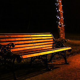 Bench in a park by Natalia Dobrescu - Artistic Objects Furniture ( still object, bench, park, canon70d, artistic, bench in a park, long exposure, night, object, furniture, photography )