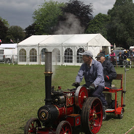 In the Parade Ring by John Davies - Transportation Other ( age of steam, steam engines, vintage machinery, vintage engines, steam traction engines )