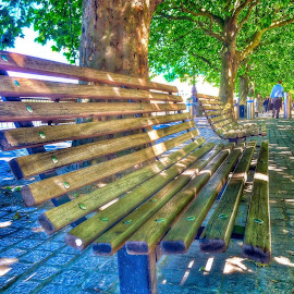 Tranquility Bench by Nachau Kirwan - City,  Street & Park  City Parks ( bench, parks, fun, cityscape, people, city,  )