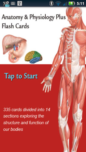 Anatomy Physiology Cards
