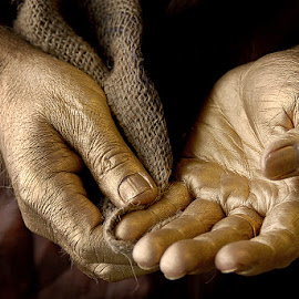 The hands of Alchemist.. by Rakesh Syal - People Body Parts