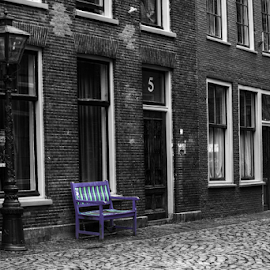 Leiden in purple by Mike Bing - City,  Street & Park  Historic Districts ( pleasantville, leiden, purple, black and white, holland, netherlands )